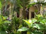 Luscious tropical gardens
