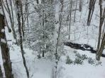 Snow on Fie Creek