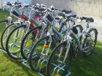 6 vélos VTC (taille M et L) - 20 euros/vélo/semaine