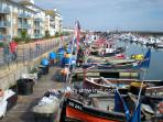Brighton Marina has an active fishing fleet and well as being a base for leisure boats.