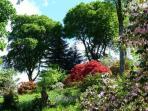Ardkinglass Gardens