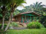 Cabina Lagunas in the jungle, breakfast included!