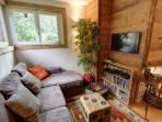 TV area with comfortable sofa and wide selection of DVDs