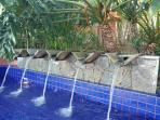 Área comum do resort: Piscina com queda d'água