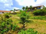 vista desde el jardin hacia las 3 casas