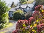 Greffyn is located in the Gwydir Forest - just half a mile walk from Betws-y-Coed.