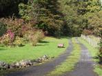 The driveway to Greffyn.