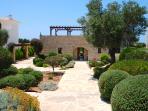 Generous size front gardens