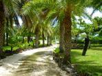 Pathway to villa