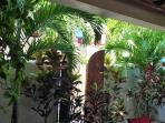 Beautiful botanical garden surrounds the villa