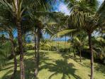 Villa Samadhana - Gardens in front of master suite