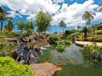 Beach Villas Koi Pond