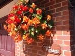 Stunning begonias at the guest parking bay