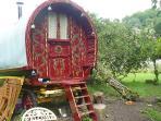 Gypsy Rose traditional bow-topped vardo sleeps 2