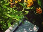 flores de la terraza