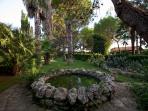 Fontana ornamentale con carpe