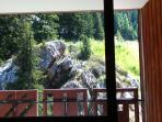 View of Rocky Outcrop and Fir trees from lounge sofa.