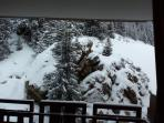 Winter view from one of the lounges