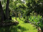 A shady spot in the iris garden where a tree swing offers one more spot to sit and relax.