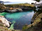 Point Lobos is only a 20 minute drive…