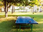 The Anandita - Table tennis anyone