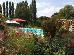 A view of the pool taken from the gardens. In the distance poplar trees surround our orchard.