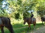 49.Randonnée à cheval