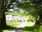 View down the farm lane.
