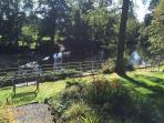 Shared river side garden