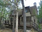 Lews Cub House