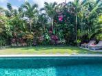 manicured garden in the villa