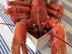 Bonne dégustation - Établissement HENRY de Crach pour vos fruits de mer et ses huîtres 'naturelles'