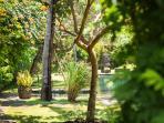 Villa Belong Dua - Garden view of pool