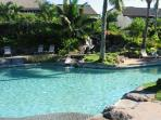 Upper tropical pool