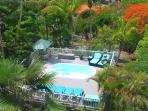Tropical landscaping surrounds the pool and property