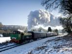 Gwilli steam railway