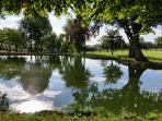 The large pond