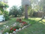 Part of garden