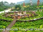 nong nooch gardens,shows and attractions 2 km from villa