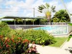piscine principale avec transat couvert et arbre du voyageur