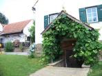 Entrance to wine cellar
