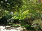 OS Garden - Maison de Charme - Il giardino in autunno
