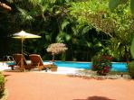 The Beauty of the Pool and Surrounding Tropical Gardens