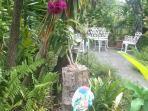 Connie's Garden