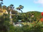 Serendip's tropical grounds