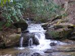 The small waterfalls on the creek