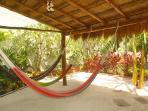 hammocks in the backyard