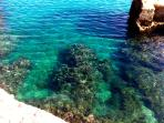 Clear waters of the Adriatic only 20 metres from the apartment