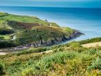 Walk to Ceibwr Cove through the woods from your cottage door and straight onto the coastal path