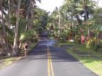 The famous 'Red Road' takes you to our studio. It is a scenic oceanside road great for hiking/biking